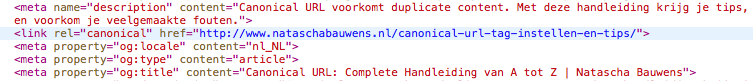 canonical tag voorbeeld